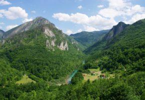 Tara Mountain nature