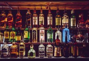 Pub Crawl in Belgrade
