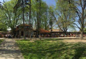 mali-kalemegdan-restaurant-garden