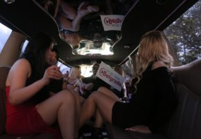 Striptease show in limo
