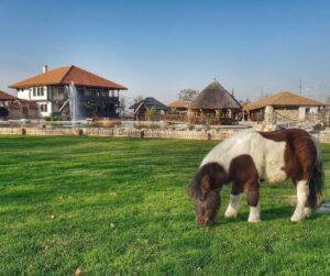 ponny-ethno-village-stolovo