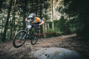 forest-cycling