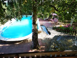house-with-pool-villa-rose-2