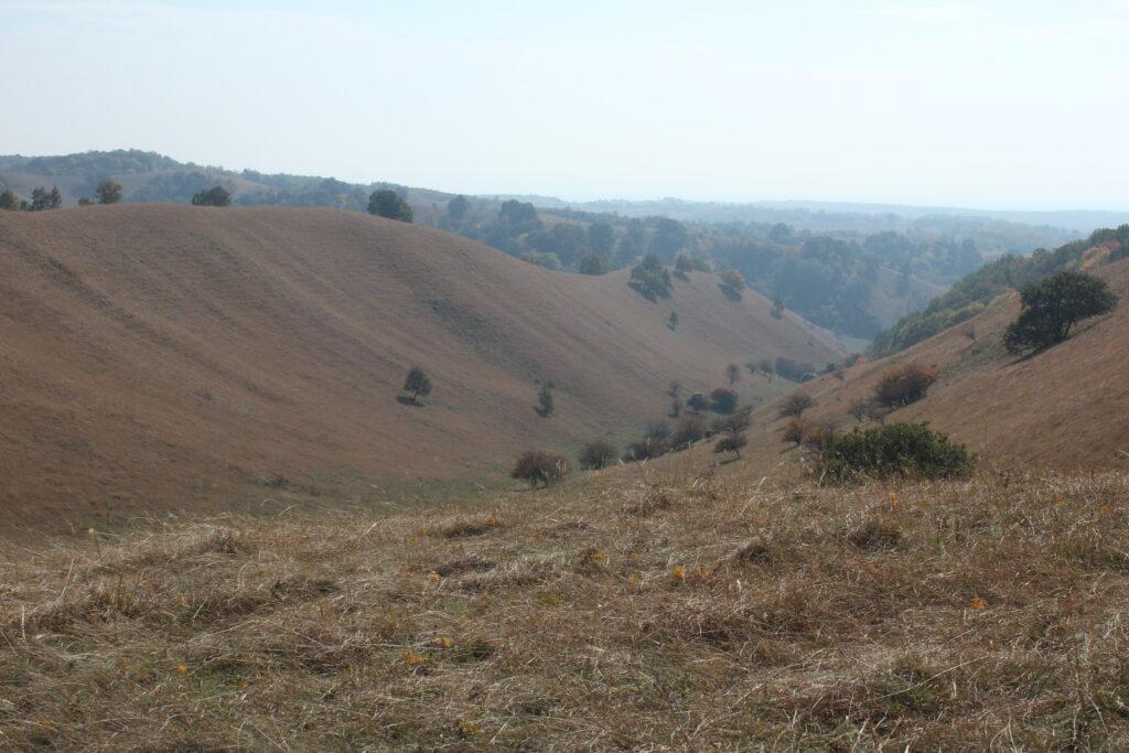 deliblatska-pescara-hills