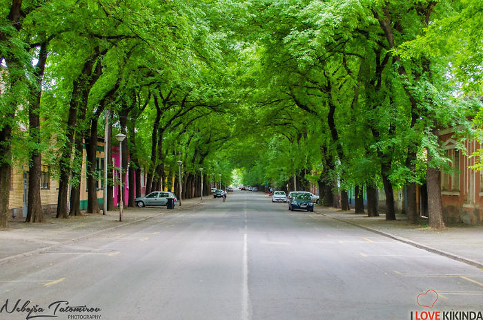 kikinda-most-beautiful-street