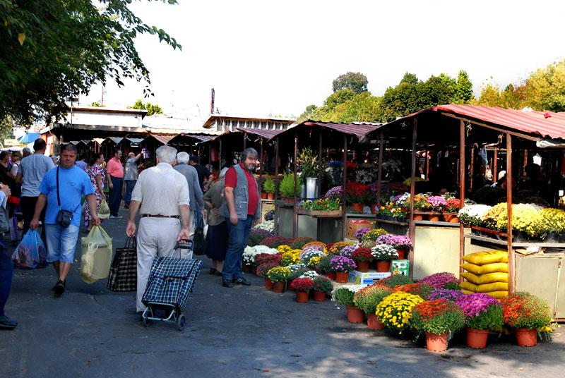 green-market-cvetkova-pijaca