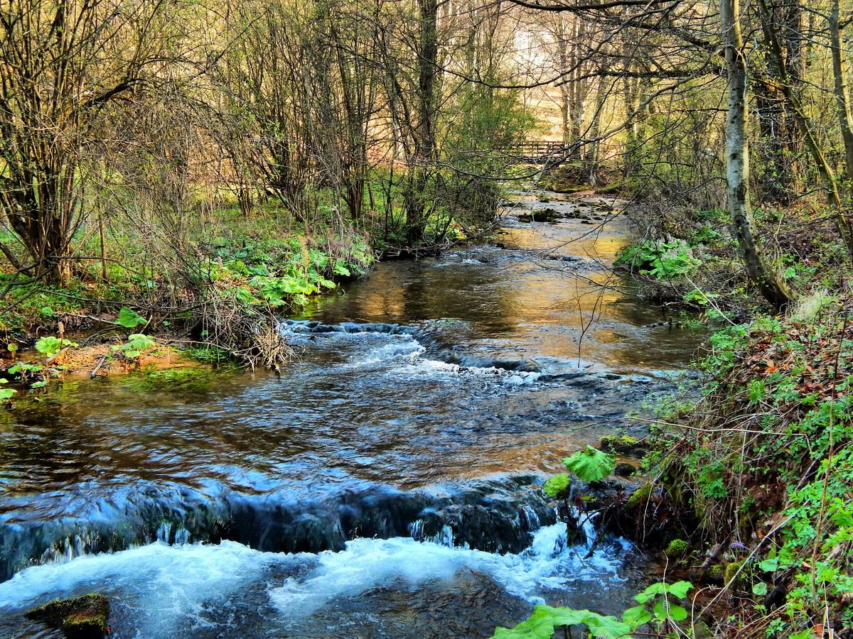 river-grza