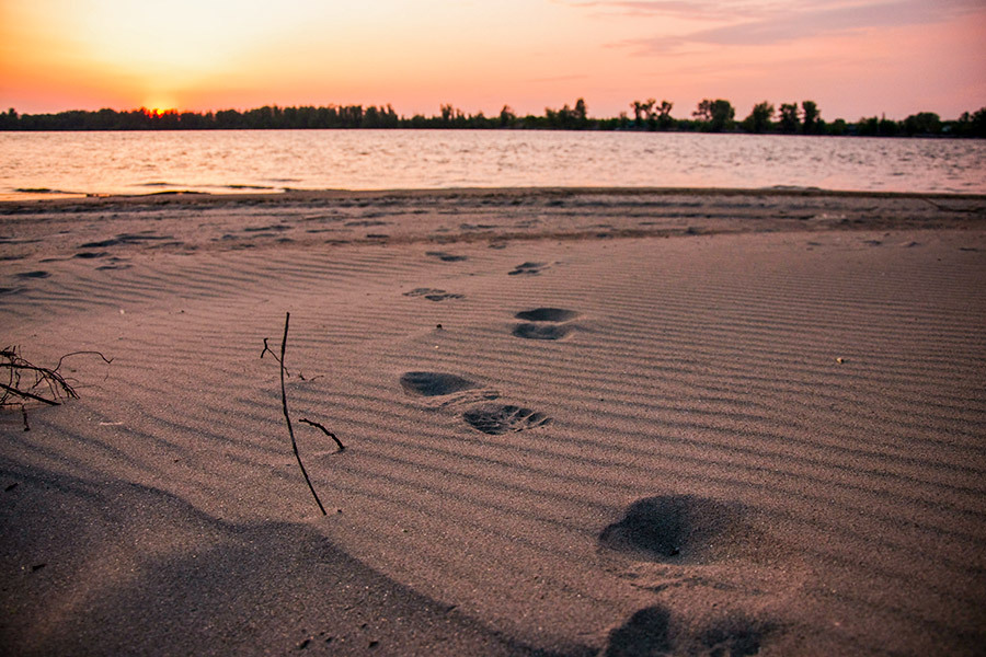 danube-wild-beaches