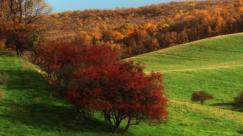 best-places-to-visit-in-autumn-in-serbia